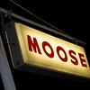 09_MOOSE