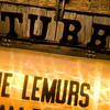 35_STUBBS_Lemurs
