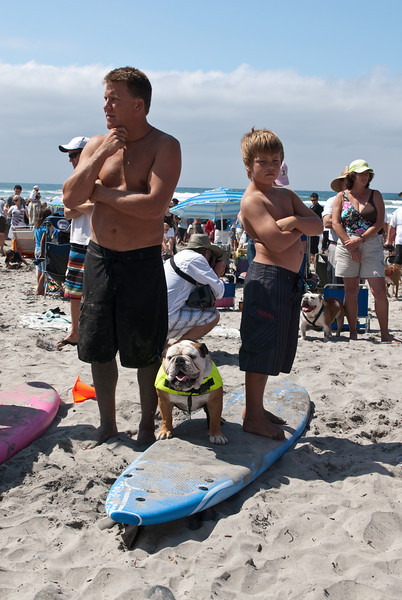 Surf Dogs-123