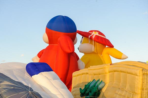 20091008 Albuquerque Balloon Fiesta 020