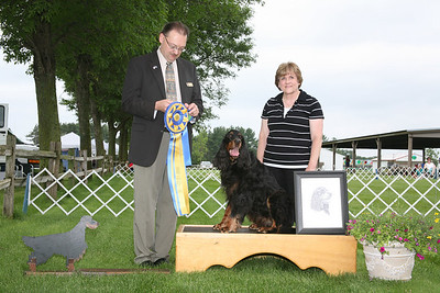 2010 NCGSC unprocessed Show Winners