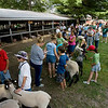 Record-Eagle/Keith King<br /> Sheep and their owners wait in line for the start of the sheep weigh-in Saturday, August 7, 2010 during the Northwestern Michigan Fair.