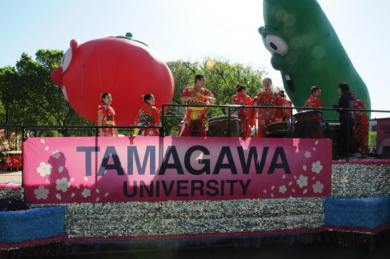 Tamagawa-012