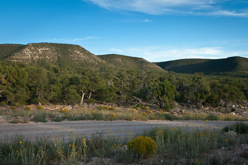 The view across the road from Kathy's property in Deer Canyon Preserve.