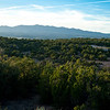 View of the Manzano Mountains, from Kathy's pad.