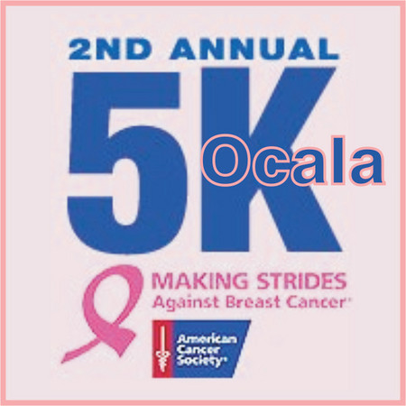 1 a makingstrides_sq300