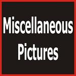 1 FCA Misc-1115