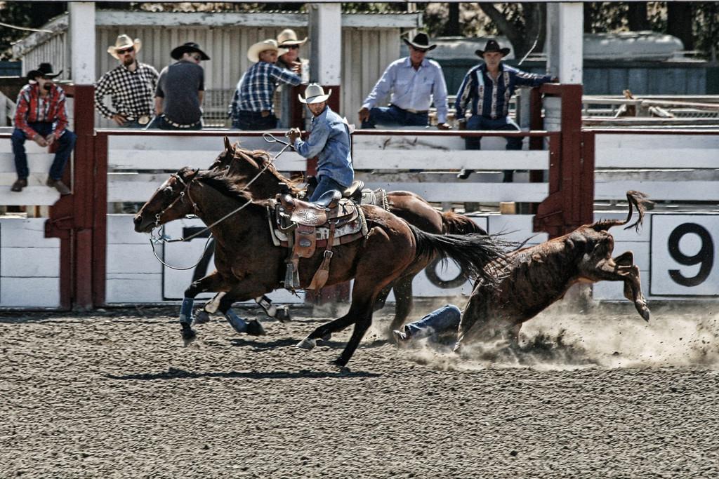 2010_SBC_Rodeo_6393
