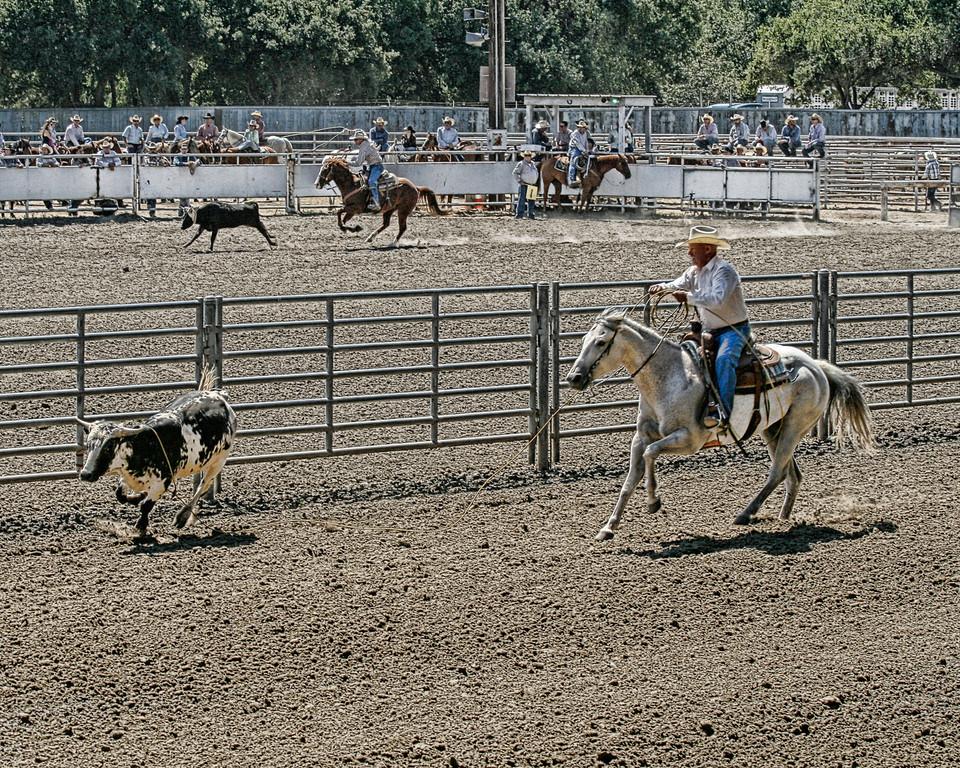 2010_SBC_Rodeo_6304-PA