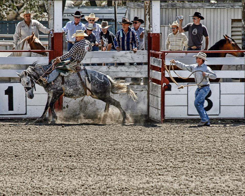 2010_SBC_Rodeo_6271