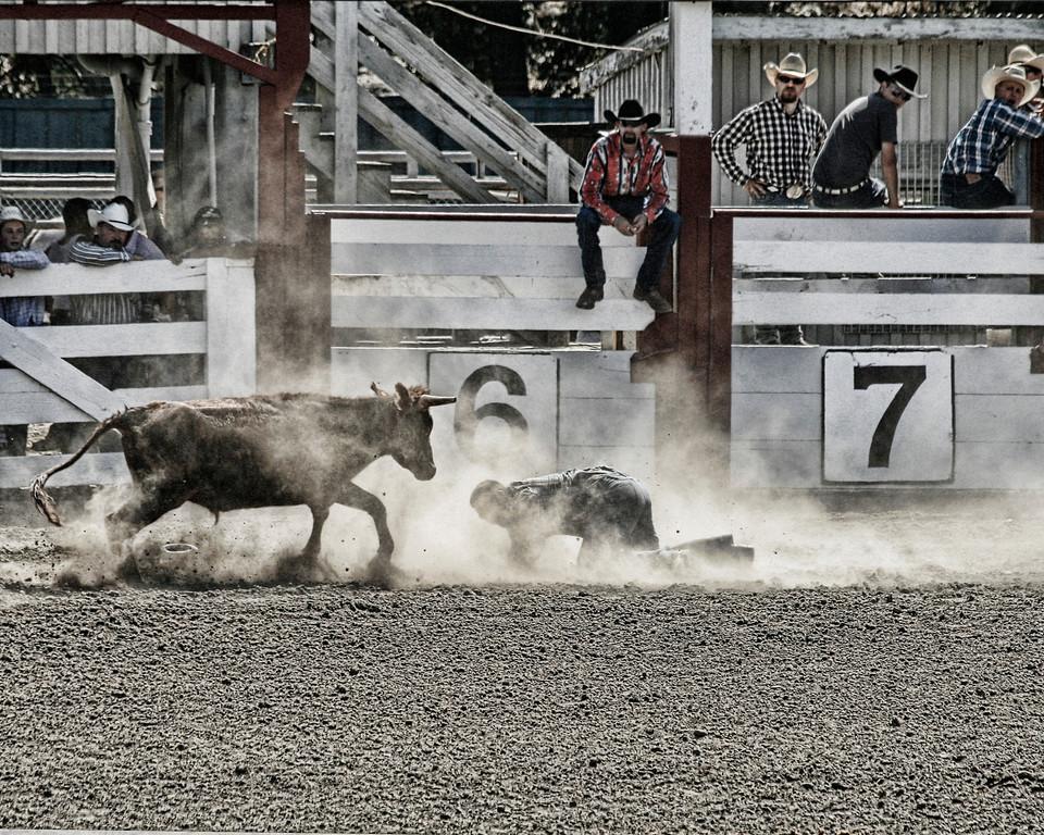 2010_SBC_Rodeo_6397