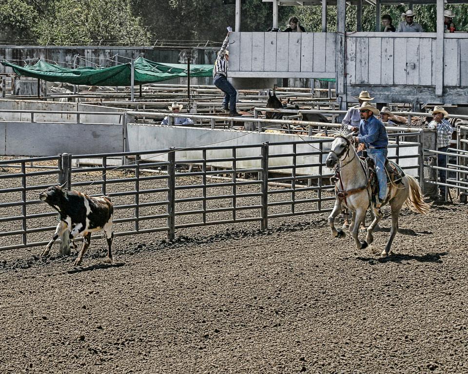 2010_SBC_Rodeo_6297