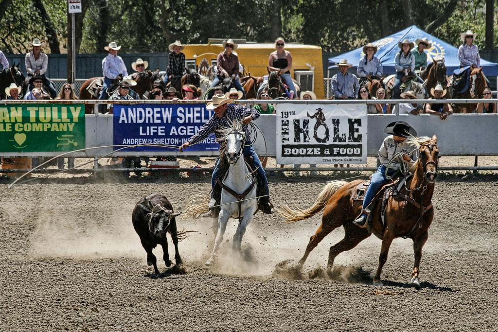 2010_SBC_Rodeo_6133