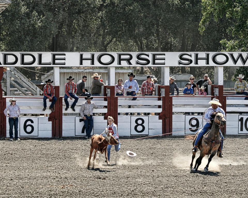 2010_SBC_Rodeo_6319-PA