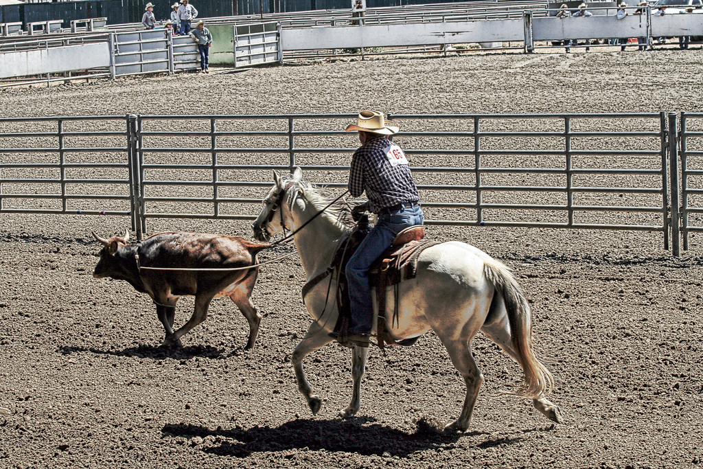 2010_SBC_Rodeo_6291