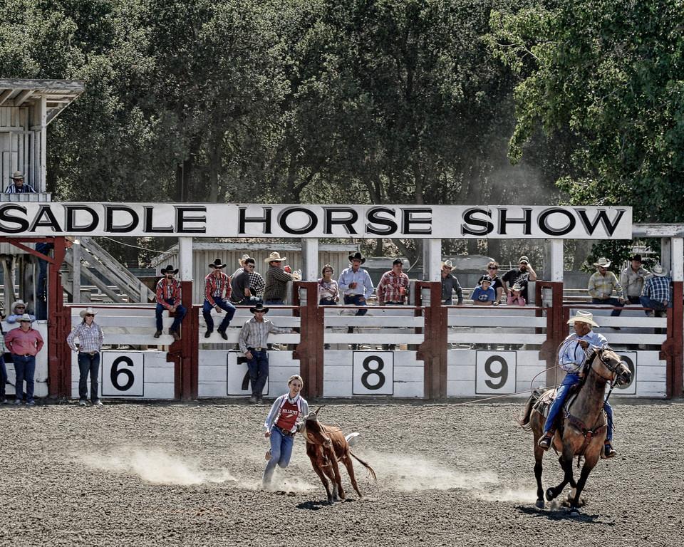 2010_SBC_Rodeo_6320-PA