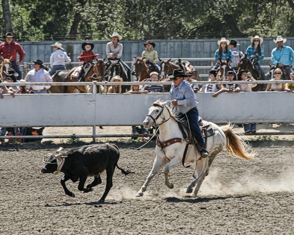 2010_SBC_Rodeo_6313