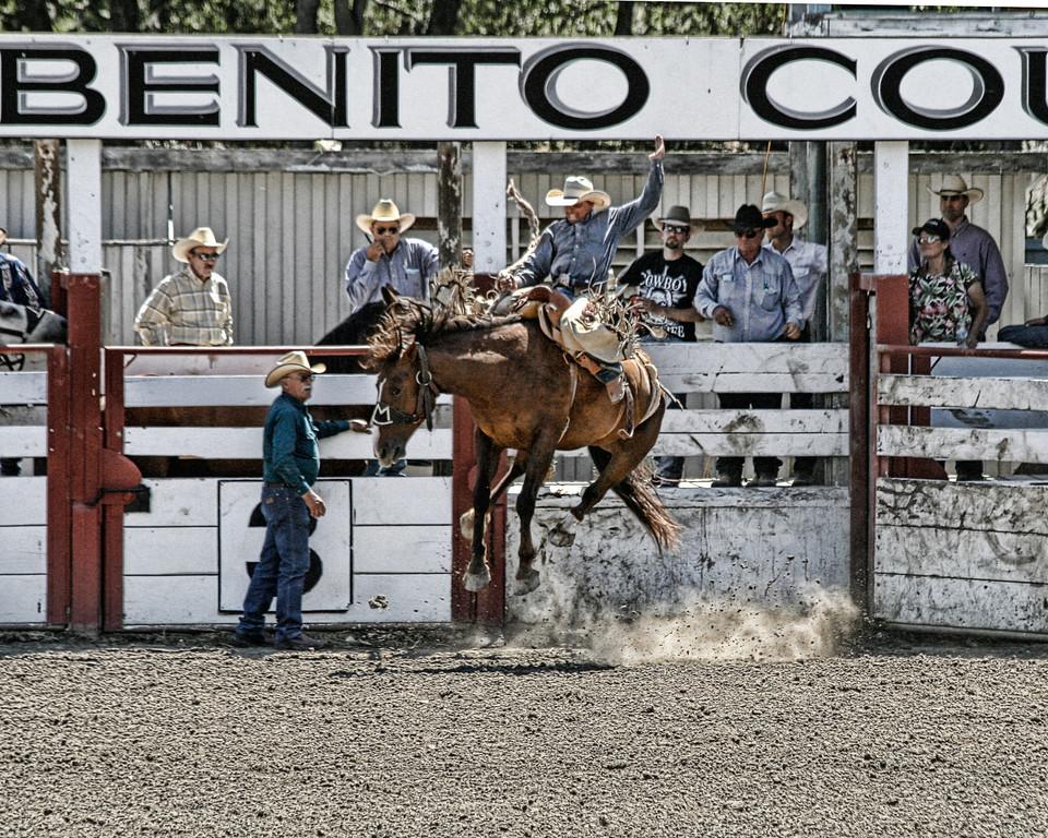 2010_SBC_Rodeo_6257