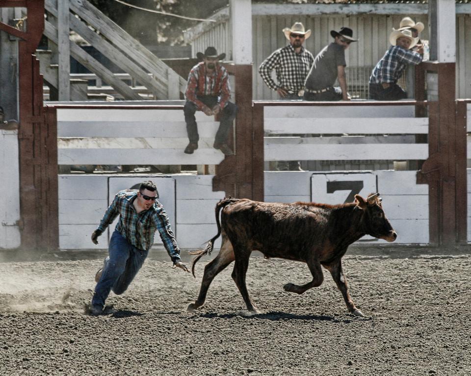 2010_SBC_Rodeo_6399