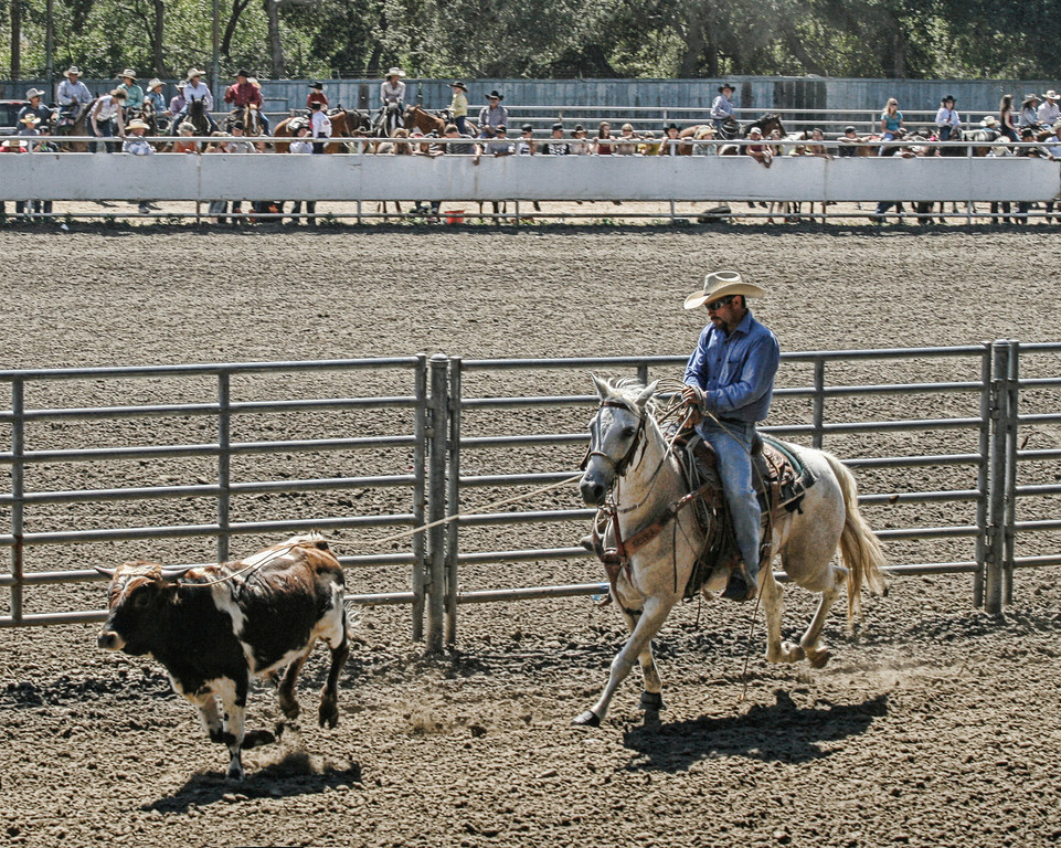 2010_SBC_Rodeo_6298