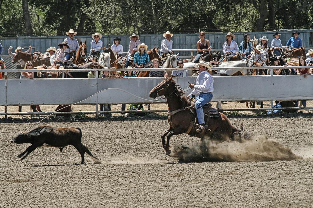2010_SBC_Rodeo_5985