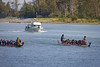 Dragon boat races on the Fraser river.