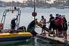 09-20-09_532_Boat Races