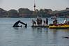 09-20-09_527_Boat Races