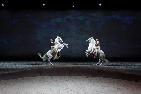 CAVALIA, THANKSGIVING GIFT TO VOLUNTEERS