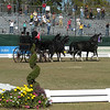 WORLD EQUESTRIAN GAMES DRIVING COMPETITION