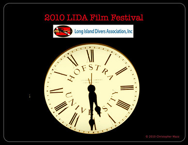2010 LIDA Film Festival