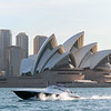 Views of the Opera House from the Harbour: #1