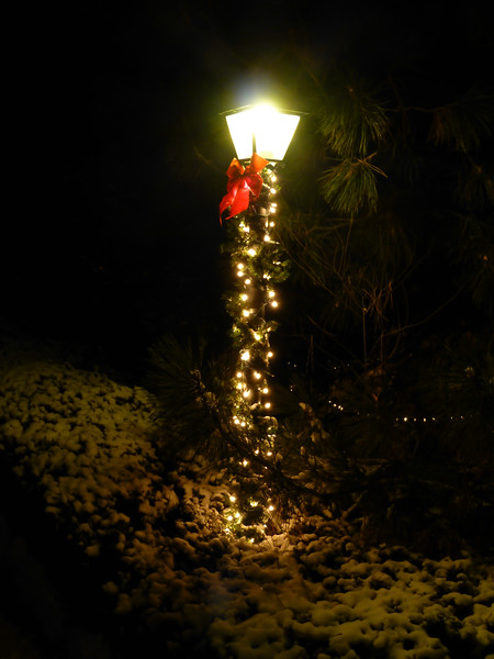 Townhouse light post