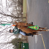 HAMT St Partrick s Day Parade 010