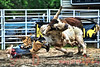 2011-06-02 Montgomery Rodeo 213