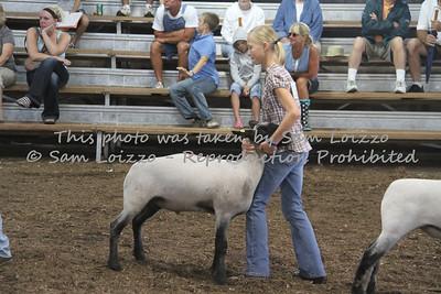 20110727-Loizzo Photography-Rock County Fair - Sheep-0020