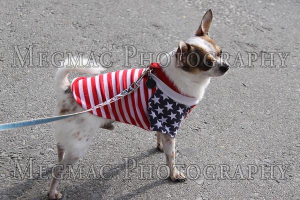 2011 Bristol Fourth of July Par_04-07-11_0004