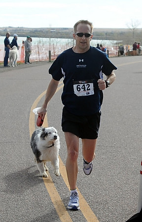 "Eric Schwartz and Blue were the first dog/owner to come in.<br /> The 11th Annual Canine Classic 5K was held at the Boulder Reservoir on Sunday.<br /> For a  photo gallery and video of the race, go to  <a href=""http://www.dailycamera.com"">http://www.dailycamera.com</a>.<br /> Cliff Grassmick/ April 17, 2011"