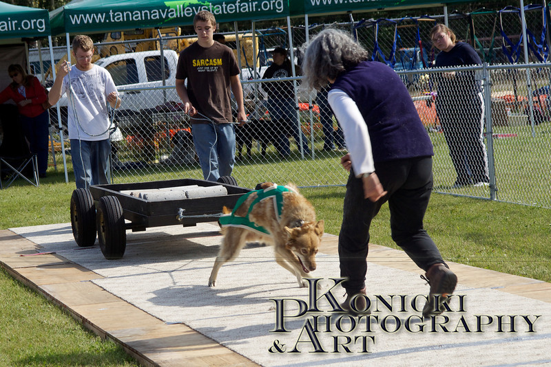 2011 IFDA Pulls at Tanana Valley State Fair