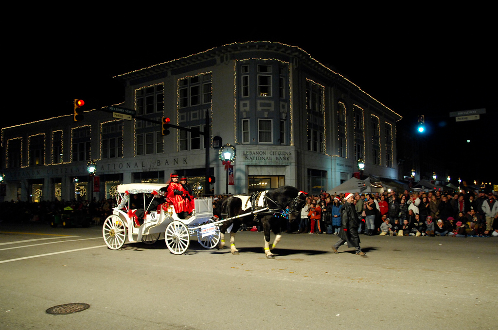 By Patty Bamber Evening Parade - 110