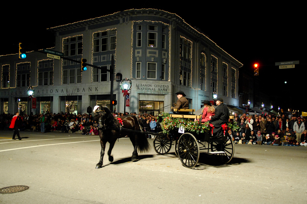 By Patty Bamber Evening Parade - 119