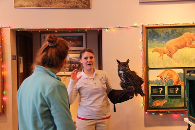 Verity with Gus the Great Horned Owl.