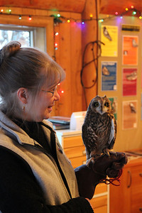 Sharon and Flame the Short Eared Owl.