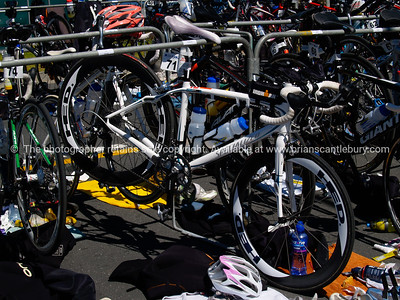 POT Half Ironman 2011, cycle transition, equipment, bicycle 71. Tauranga is New Zealands 5th largest city and offers a wonderfull variety of scenic and cultural experiences. ALSO SEE; http://www.blurb.com/b/3811392-tauranga