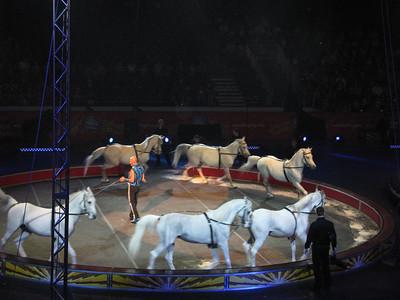 Circus_IMG_5724