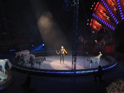 Circus_IMG_5726