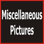 1 2011 05 08 MomDay Misc-1109