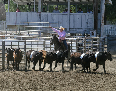 2011 San Benito County Horse & Saddle Show