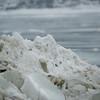 Harrisburg Polar Bear Plunge 2011-02450