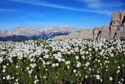 In the Dolomites